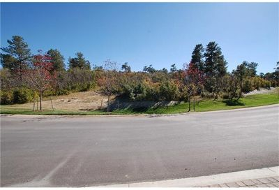 1725 Vine Cliff Heights Colorado Springs CO 80921