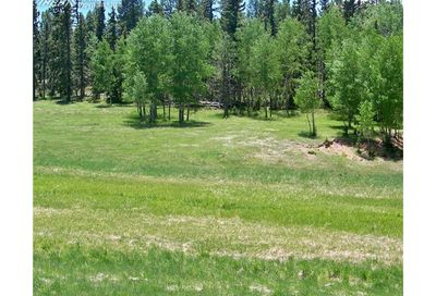Tract 4 County 42 Road Divide CO 80814