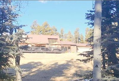 101 Manchester Place Florissant CO 80816