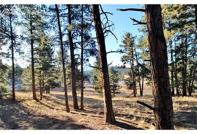 205 Sourdough Road Woodland Park CO 80863