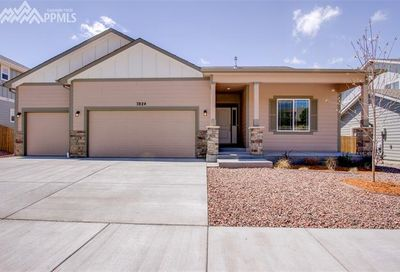 7824 Pinfeather Drive Fountain CO 80817