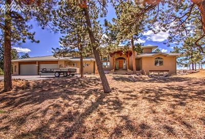 101 Suncrest Place Divide CO 80814