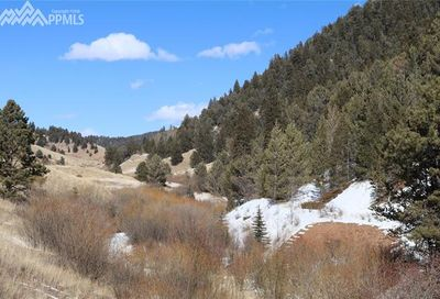 7072 County 61 Road Divide CO 80814