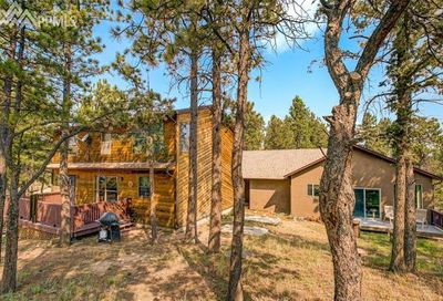 12 Druid Trail Florissant CO 80816