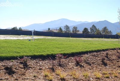 1485 Vine Cliff Heights Colorado Springs CO 80921