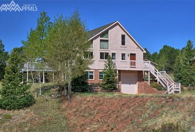 1030 Cantiberry Road Divide CO 80814