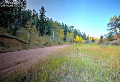 493 Willow Road Divide CO 80814