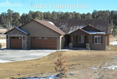 12735 Clark Peak Court Peyton CO 80831