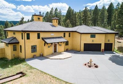 419 Lucky Lady Drive Woodland Park CO 80863