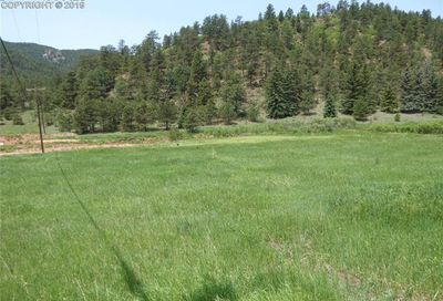 Tbd County Road 21 Woodland Park CO 80863