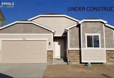 7951 Martinwood Place Colorado Springs CO 80908
