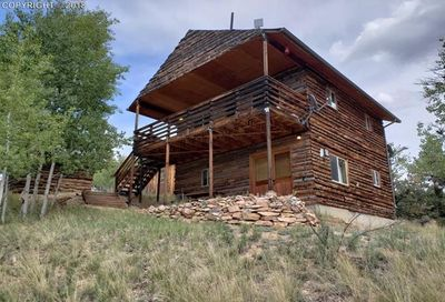 314 Shavano Creek Trail Florissant CO 80816