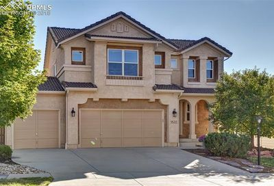9533 Newport Plum Court Colorado Springs CO 80920