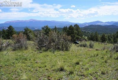 Tbd County 12 Road Florissant CO 80816
