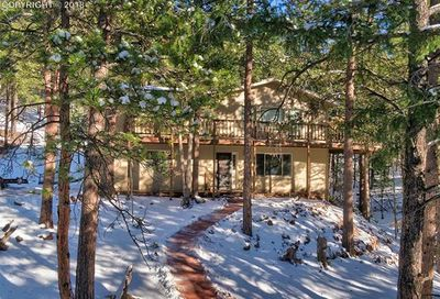 1167 Forest Hill Road Woodland Park CO 80863