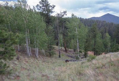255 Idlewild Drive Cripple Creek CO 80813