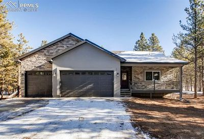 1175 Ptarmigan Drive Woodland Park CO 80863