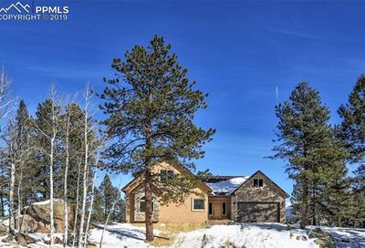 146 Conifer Circle Florissant CO 80816