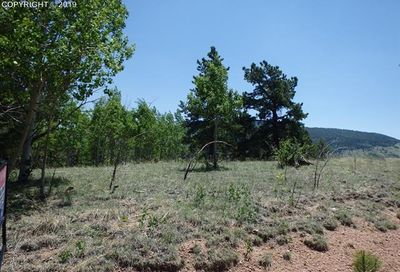 1058 May Queen Drive Cripple Creek CO 80813
