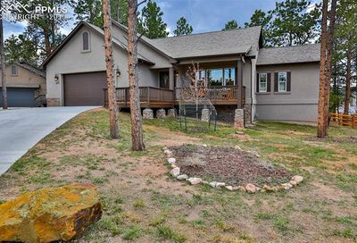 1170 Ptarmigan Drive Woodland Park CO 80863