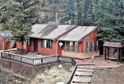 61 Brook-By-Way Florissant CO 80816