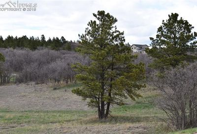 620 Pioneer Camp View Monument CO 80133
