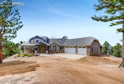 1655 Elk Ridge South Divide CO 80814