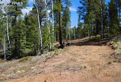 403 Woody Creek Road Divide CO 80814