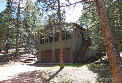 1309 W Browning Avenue Woodland Park CO 80863