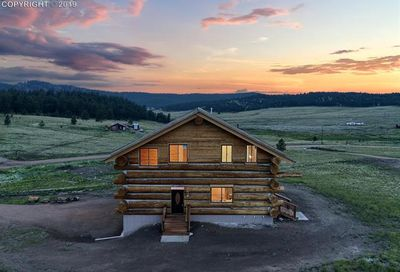 654 High Pasture Road Florissant CO 80816