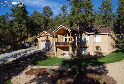 4519 Edwards Place Cascade CO 80809