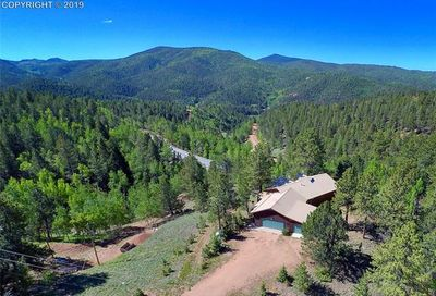 487 Calcite Drive Divide CO 80814