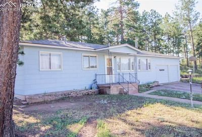 303 S Baldwin Street Woodland Park CO 80863