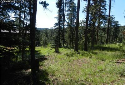 27635 Stagecoach Road Conifer CO 80433