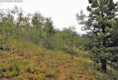 113 Buckhorn Road Cripple Creek CO 80813