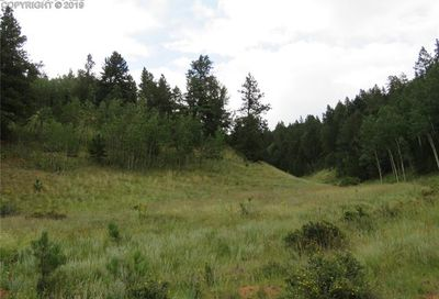 637 Valley Road Divide CO 80814