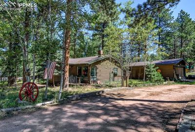 523 N Walnut Street Woodland Park CO 80863