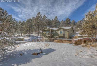 449 Twin Lakes Drive Divide CO 80814