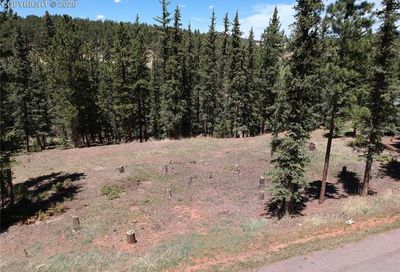 220 Iron Eagle Point Woodland Park CO 80863