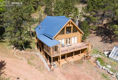 7741 County Road 61 Divide CO 80814
