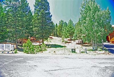 1443 Crestview Way Woodland Park CO 80863