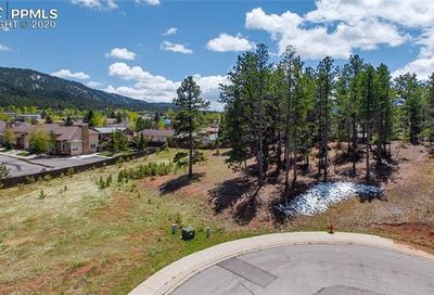 1205 Cottontail Trail Woodland Park CO 80863