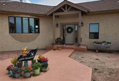 1108 County Road 5 Divide CO 80814