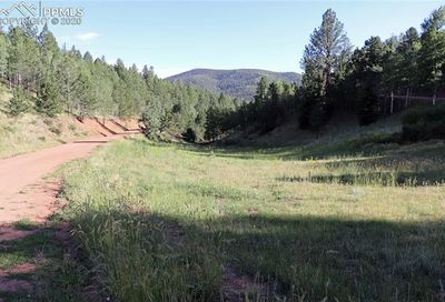 185 Valley Road Divide CO 80814