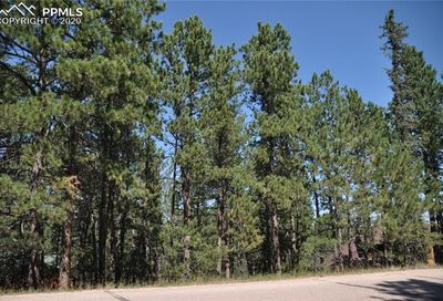 1615 Masters Drive Woodland Park CO 80863