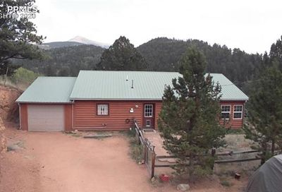 443 Beaver Pond Road Divide CO 80814
