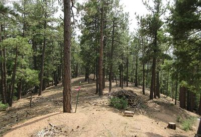 2255 Elk Park Road Larkspur CO 80118