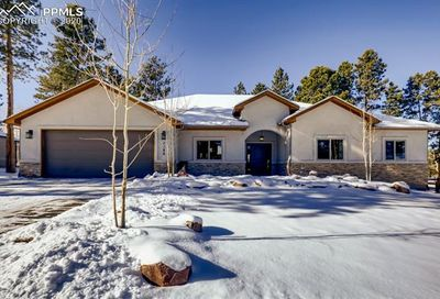 1186 Ptarmigan Drive Woodland Park CO 80863