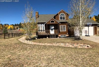482 Gray Horse Circle Woodland Park CO 80863
