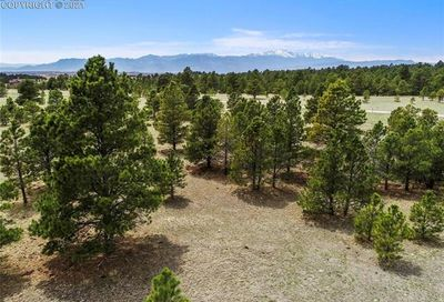 8585 Forest Line Point Colorado Springs CO 80908